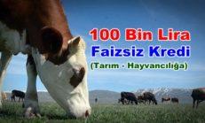 Faizsiz Tarım ve Hayvancılık Kredisi Nasıl Alınır?