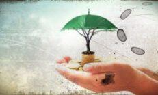 Bireysel Emeklilik Hesaplama Araçları